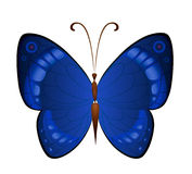 Dunkelblaue Schmetterlinge des Vektors Stockfotografie