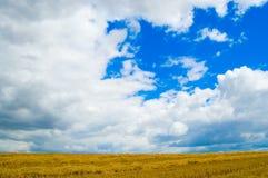 Dunkelblauer Himmel stockfotografie