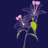 Dunkelblauer Hintergrund mit Lilienblumen Stockbild