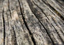 Dunkelbrauner strukturierter natürlicher Holzoberflächehintergrund Stockfoto