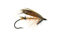 Dunkeld Salmon Fly Stock Photography