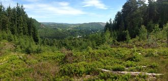 Dunkeld. Top of one of the local mountain bike trails Royalty Free Stock Photography