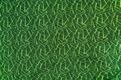 Dunkelgrüner abstrakter Hintergrund mit hellgrünen Noten stockfotografie