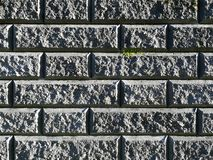 Dunkelgraue Backsteinmauer mit der rauen Struktur, überwältigt mit grüner Moosbeschaffenheit, Hintergrund Lizenzfreies Stockfoto