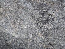 Dunkelgraue Farbe des Zementhintergrundes Stockbilder