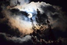 Dunkelheit und Mond lizenzfreies stockbild
