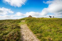 Dunkery Beacon. The path leading to the top of dunkery Beacon, the highest point on Exmoor National park in Somerset Royalty Free Stock Image