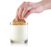 Dunking cookie in milk Stock Images