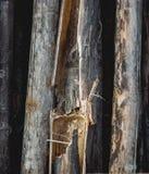 Dunkle alte gebrochene Bambusplankenbeschaffenheit Kontrollturm der Ziegelsteine Lizenzfreie Stockfotos