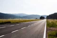 Dunkle Asphaltlandstraße umgeben mit Spalten des Waldgrün-Feldes und des elektrischen Stroms in den Bergen in Kroatien Lizenzfreie Stockfotos