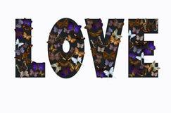 Dunkle Farbwort ` Liebe ` gemacht von den verschiedenen bunten Schmetterlingen gegen weißen Hintergrund stock abbildung