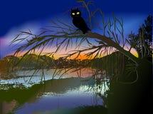 Dunkle furchtsame Halloween-Landschaft mit Nebenfluss, Schattenbild des Baums und Eule bei Sonnenuntergang Stockfotografie