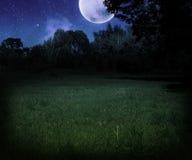 Dunkle furchtsame Wiese am Nachthalloween-Hintergrund Stockfotos