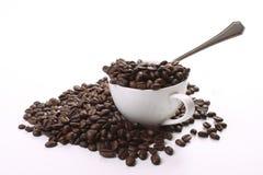 Dunkle gebratene Kaffeebohnen Lizenzfreie Stockfotografie