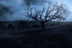 Dunkle gespenstische Landschaft Lizenzfreie Stockfotografie