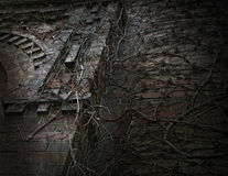 Dunkle gotische Rebe bedeckte Wand Stockfotografie