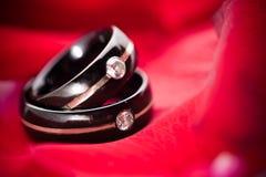 Dunkle Hochzeits-Ringe auf roten Blumenblättern Lizenzfreies Stockfoto
