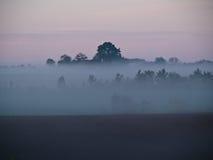 Dunkle Landschaft mit Nebel und Nebel Stockbild