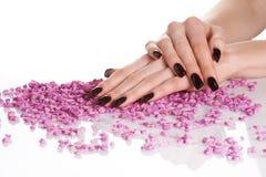 Dunkle Maniküre und rosafarbene Steine lizenzfreie stockfotos
