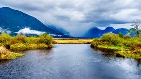 Dunkle Regenwolken an einem kalten Fr?hlingstag vorbei an Pitt River und an den Lagunen von Pitt-Addingtonsumpf in Pitt Polder am stockbilder