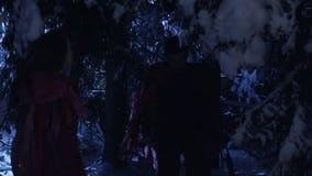 Dunkle Schattenbilder von zwei Leuten, die in Wald des verschneiten Winters nachts stilles umziehen stock video footage