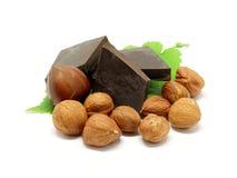 Dunkle Schokolade mit Haselnüssen und Blättern stockbild