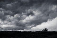 Dunkle stürmische Wolken über dem einfachen, einzigen Baum auf dem Gebiet herein für stockbild