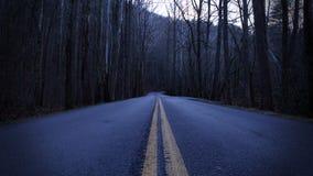 Dunkle und deprimierende Straßen-Fotografie einer Straße im leeren Wald Lizenzfreie Stockbilder