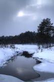 Dunkle Winterlandschaft Stockfotos