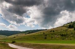 Dunkle Wolken über dem Waldweg Lizenzfreie Stockfotos