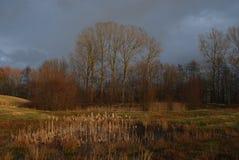 Dunkle Wolken über einer Naturlandschaft Stockbild