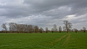 Dunkle Wolken abive eine flämische Ackerlandlandschaft Lizenzfreies Stockbild