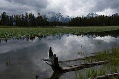 Dunkle Wolken brüten über Wasser im Reiher-Teich lizenzfreies stockfoto
