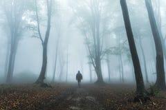 Dunkle Zahl im nebeligen Wald Lizenzfreie Stockfotos