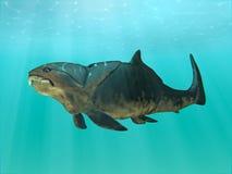 Dunkleosteus游泳 库存图片