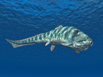 Dunkleosteus Stock Photos