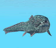 Dunkleosteus Royalty Free Stock Image