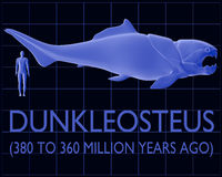 Dunkleosteus e confronto umano di dimensione Immagine Stock