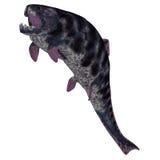 Dunkleosteus  Fish on White Stock Photography