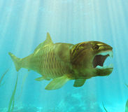Dunkleosteus Lurking Royalty Free Stock Photo