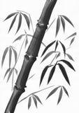 Dunkler Bambusstiel und Blätter Lizenzfreie Stockbilder