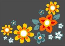 Dunkler Blumenaufbau Stockfotos