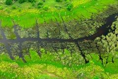 Dunkler Fluss, Luftlandschaft in Okavango-Delta, Botswana Seen und Flüsse, Ansicht vom Flugzeug, UNESCO-Welterbestätte in Sout lizenzfreie stockfotos