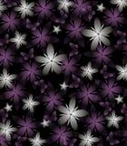 Dunkler Frühlings-Hintergrund mit den grauen und purpurroten Blumen auf Schwarzem Stockbild