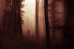 Dunkler Halloween-Erscheinungsgeist im Wald mit Nebel Stockbild