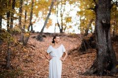 Dunkler Herbst Stockfoto