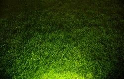 Dunkler kontrastierter Hintergrund des grünen Grases Lizenzfreie Stockbilder