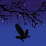 Dunkler Krähenvogel, der über furchtsamen Halloween-Nachtbaumvektor fliegt Stockbilder