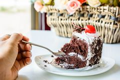 Dunkler Schokoladenkuchen, Stück des Kuchens Lizenzfreie Stockfotografie