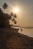Dunkler Sonnenuntergang über Meer, sandige Küstenlinie, Palmen Stockbilder